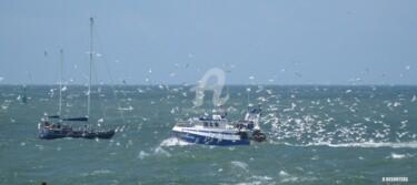 Retour de pêche au Havre